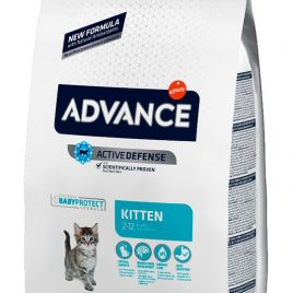 Advance Cat Kitten 1,5 Kg