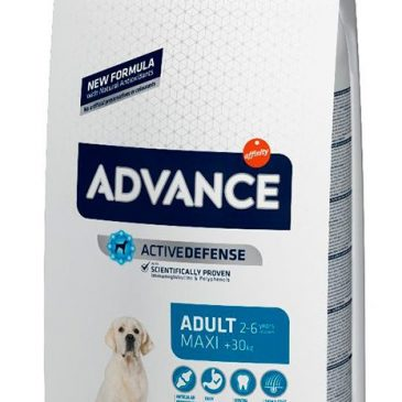 Advance Maxi Adult 14 Kg