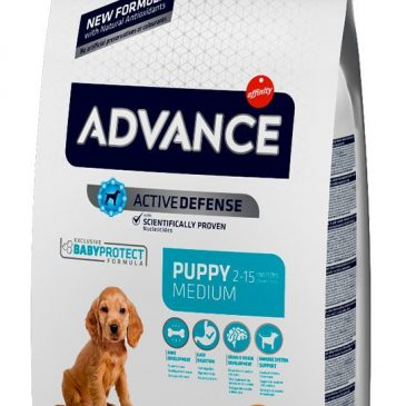 Advance Medium Adult C&R 3 Kg